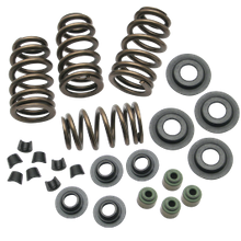 "Sidewinder<sup>®</sup> .650"" Valve Spring Kit for 2005-'16 Big Twins and 2004-'16 HD<sup>®</sup> Sportster<sup>®</sup> Models"