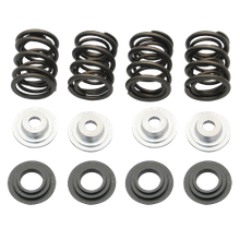 ".550"" Lift Double Valve Spring Kit for 1948-'84 Panhead and Shovelhead Engines"