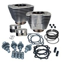 Hooligan Kit - 883cc to 1200cc for 2000-'16 HD® Sportster® Models - Silver