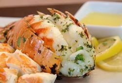 Maine Lobster Tail