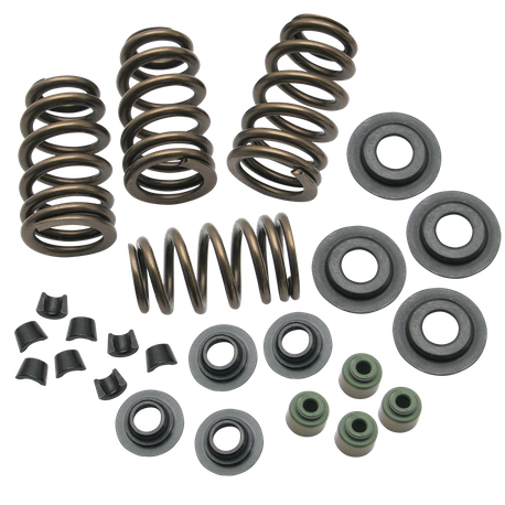 "Sidewinder<sup>®</sup> .650"" Valve Spring Kit for 2005-'17 Big Twins and 2004-'17 HD<sup>®</sup> Sportster<sup>®</sup> Models"