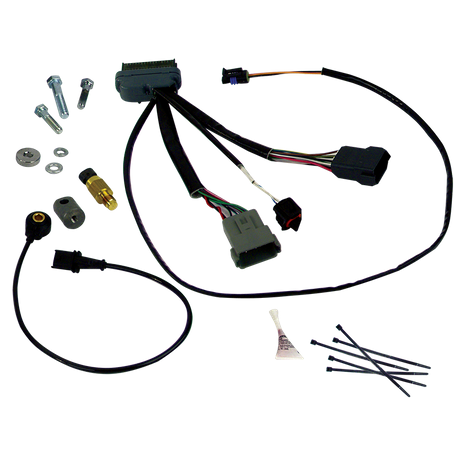 IST<sup>®</sup> Ignition Installation Kit for 1999–'03 carbureted HD<sup>®</sup> Big Twins.